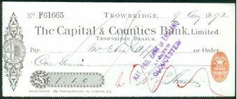 Picture of Trowbridge Branch, 18(92), type 3b