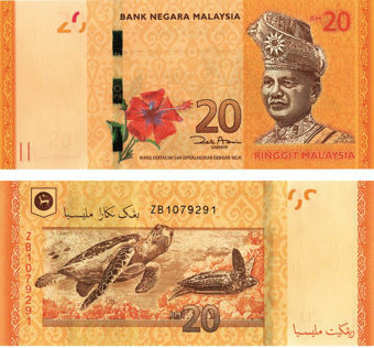 Picture of Malaysia 20 Ringgit (2012) P54 Turtles Unc