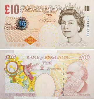 Picture of Chris Salmon £10 Darwin B408 Unc