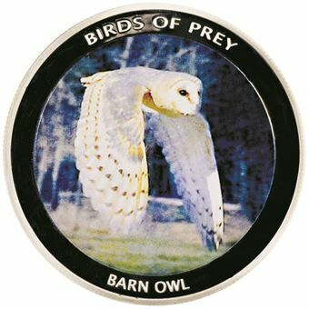 Picture of Malawi, Barn Owl