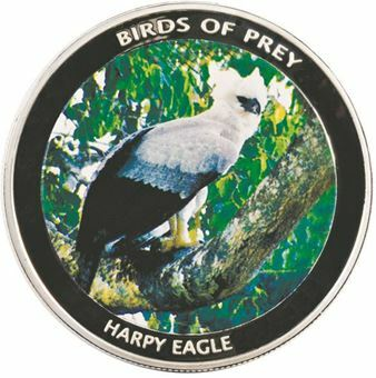 Picture of Malawi, Harpy Eagle