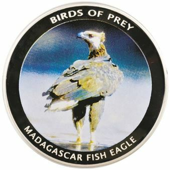 Picture of Malawi, Madagascar Fish Eagle
