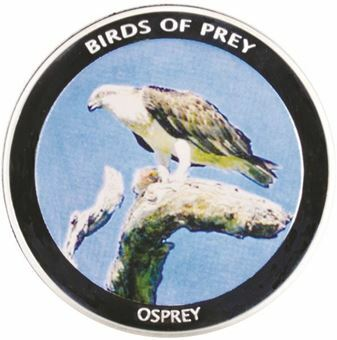 Picture of Malawi, Osprey
